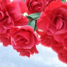 Rockin' Red Roses